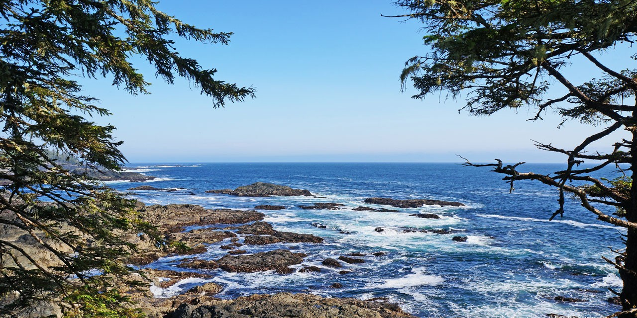 The Wild Pacific Trail (Vancouver Island)