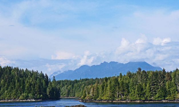 Tofino: A Town at the End of the Road in Vancouver Island