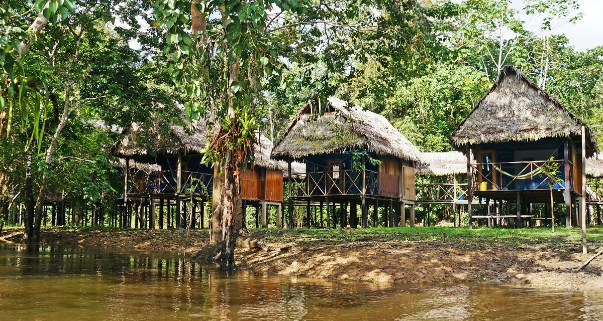 Things to Consider When Choosing an Amazonian Lodge