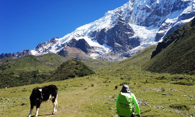 How to Choose an Inca Trail Trekking Company