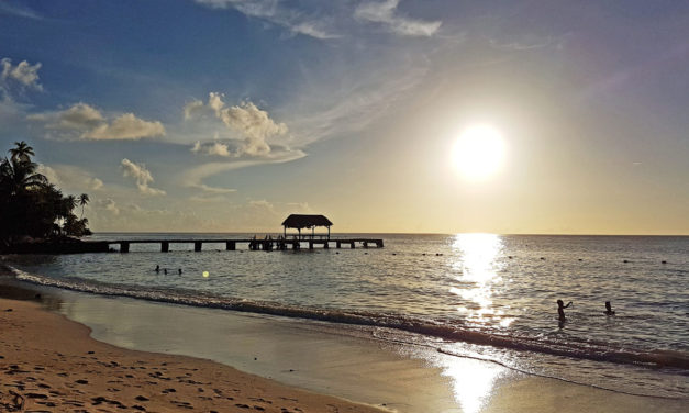 How to Visit Four Amazing Beaches in Tobago in One Afternoon
