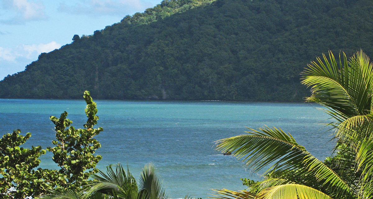 The Northeastern Coast of Trinidad: A Day Trip