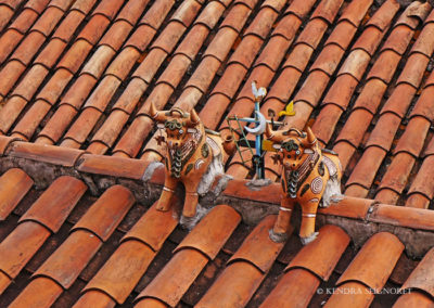 Cusco - red tiled roofs (4)