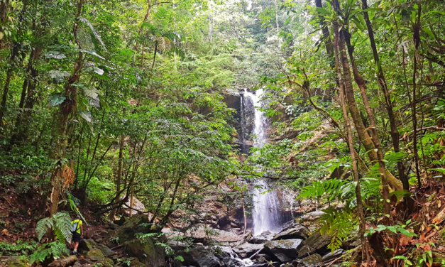 Adventure to Avocar Falls and Three Pools – Trinidad