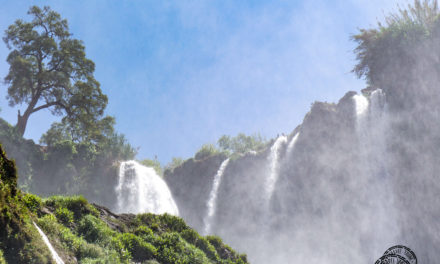 Yes, Ouzoud Waterfalls are worth checking out on a day trip from Marrakesh!