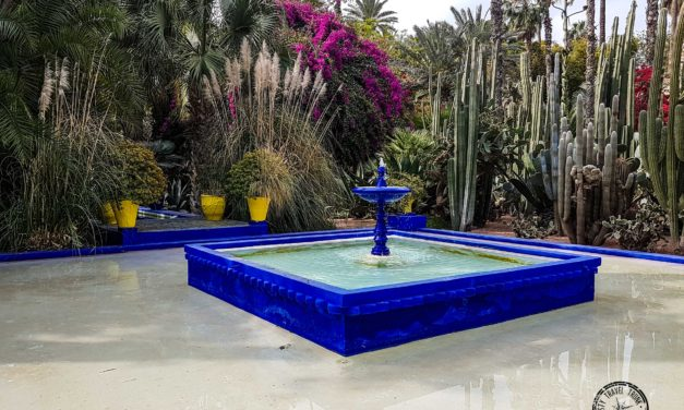Why I Don't Really Recommend the Majorelle Gardens of Marrakesh