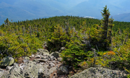 Trekking the Presidential Traverse: Day Four