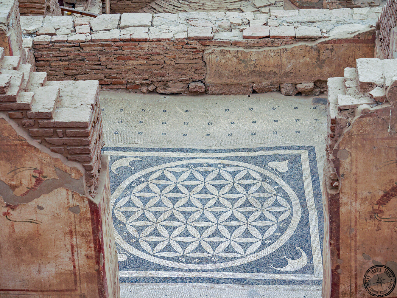 Ephesus - Terrace Homes