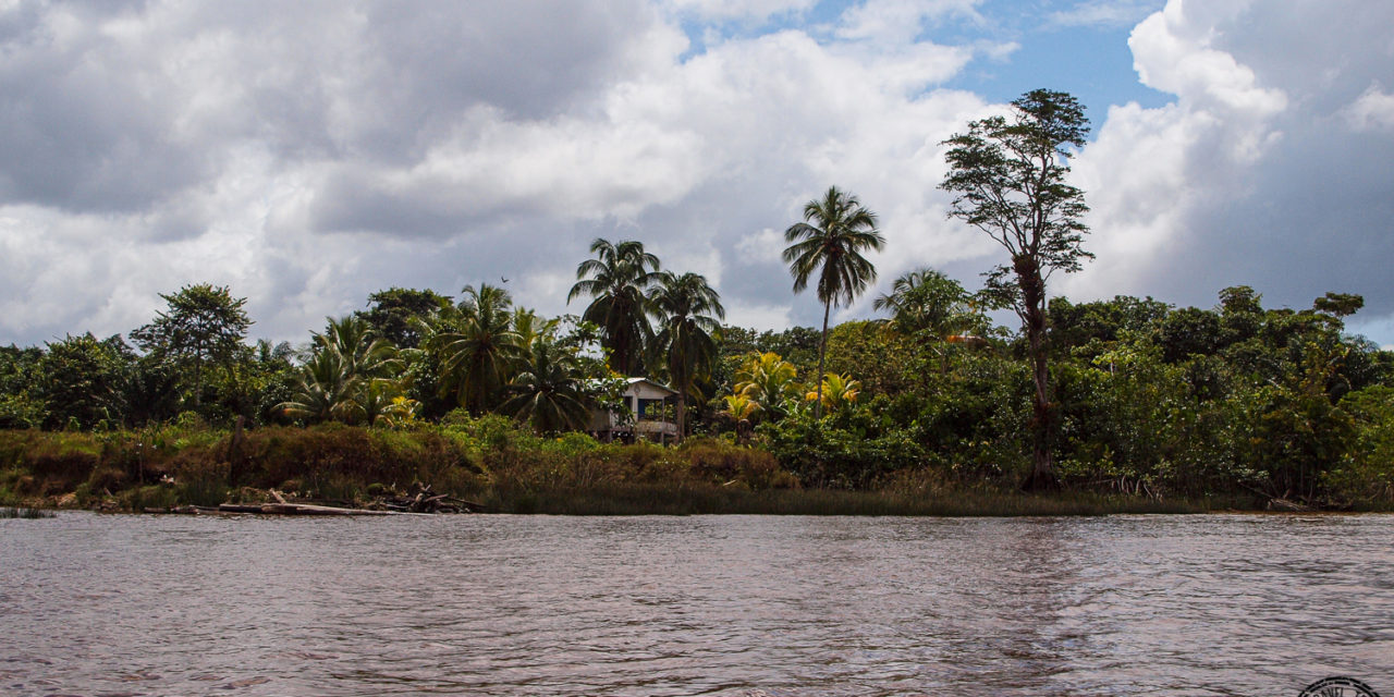 Sailing Down the Essequibo